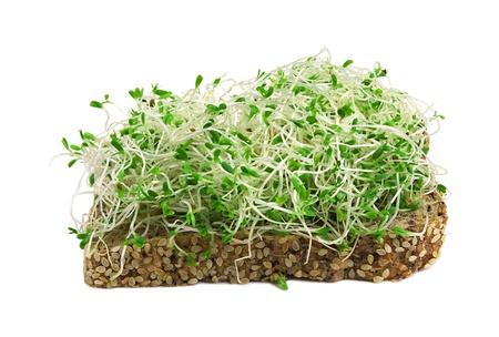 germinados: s�ndwich con brotes de alfalfa aislados en blanco