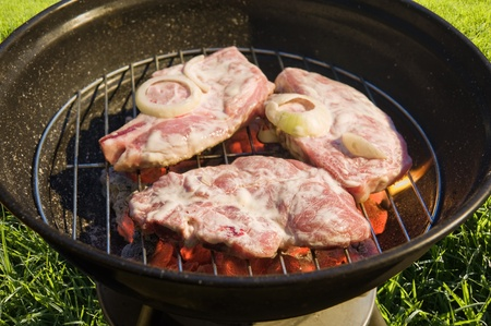 kettle barbecue grill with raw meat on grass background  Stock Photo - 10226282