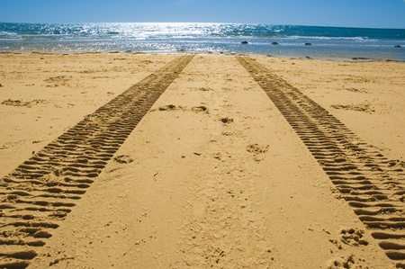 sea mark: tractor tracks on the golden sand leading into the sea