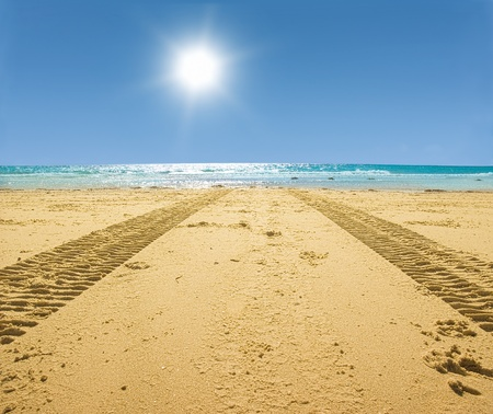 tractor tracks on the golden sand leading into the sea photo