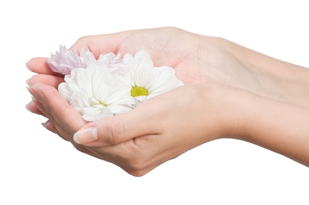 image of beautiful female hands with flower isolated on white photo