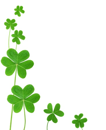 St. Patrick's clover border isolated on white background  Stock Photo - 15846359