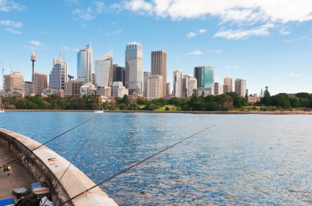 Skyline of Sydney with city central business district.Sydney harbour Stock Photo - 16731344
