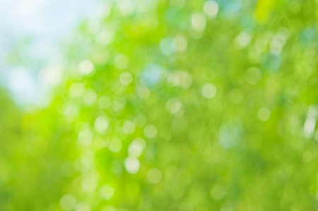 Beautiful summer or spring  abstract natural bokeh background Stock Photo - 16883005