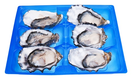 ostracean: half a dozen oysters in blue box isolated on white background