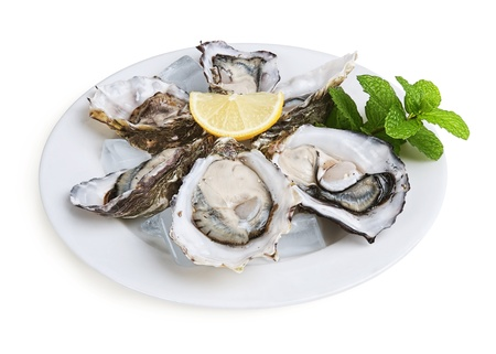 half a dozen oysters on white plate with ice and lemon isolated on white background Stock Photo