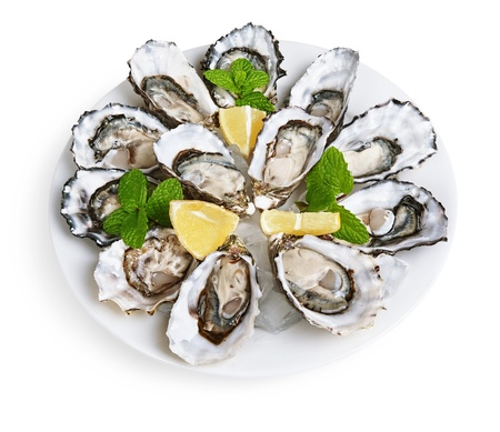ostracean: dozen oysters on white plate with ice and lemon isolated on white background