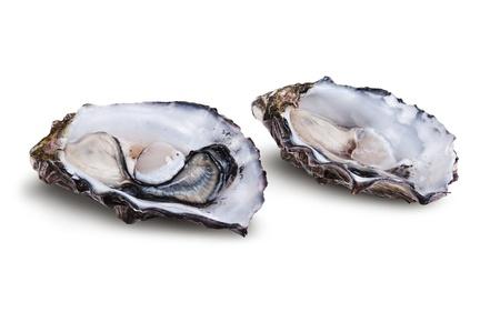 ostra: Ostra abierta fresca aislada en el fondo blanco