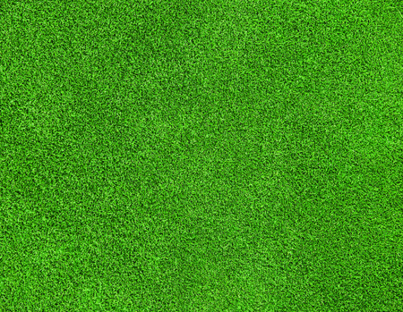 beautiful green grass texture on golf course