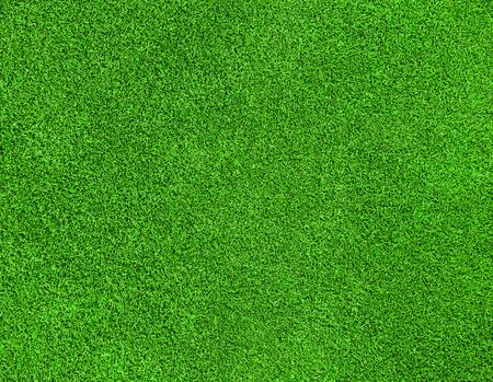 ゴルフコースの美しい緑の草テクスチャ