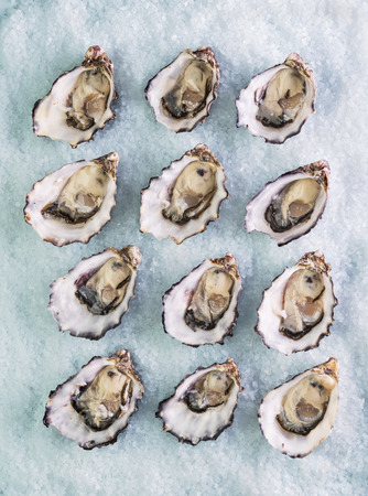 dozen: dozen fresh oysters on a sea salt top view Stock Photo