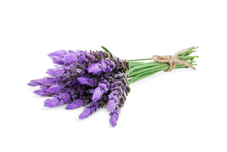 bundle of lavender flowers isolated on white background