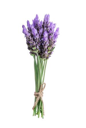 bundel van lavendel bloemen geïsoleerd op witte achtergrond