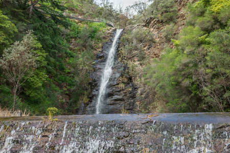 gully: Waterfall Gully located in Cleland Conservation Park - Adelaide, South Australia