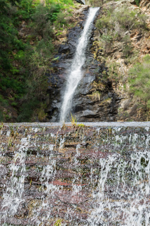 gully: Waterfall Gully located in Cleland Conservation Park - Adelaide, South Australia.Focus on the front