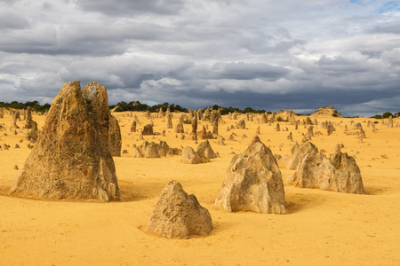 Yellow sand dunes and  limestone  pillars  Pinnacles Desert in the Nambung National Park, Western Australia. Imagens - 67643211
