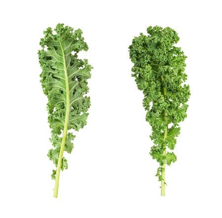 deux côtés de chou vert feuilles fraîches de légumes isolé sur fond blanc Banque d'images