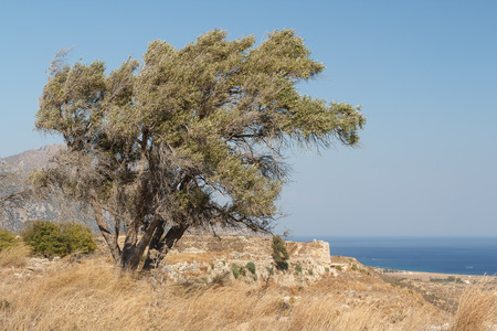 Ruins of the medieval Venetian fort Antimachia, Kos island, Greece