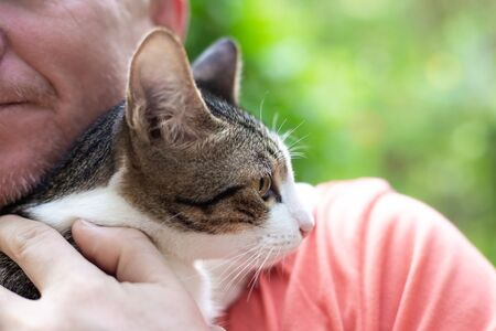 adult man holds a cat in his arms, holding it to himself, love for pets
