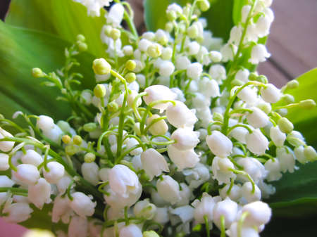 bouquet of spring white flowers lilies of the valley, congratulations on the holiday, mother's day, women's day.