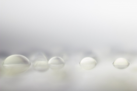 Abstract Low Contrast Soft Focus Waterdrops Macro Background