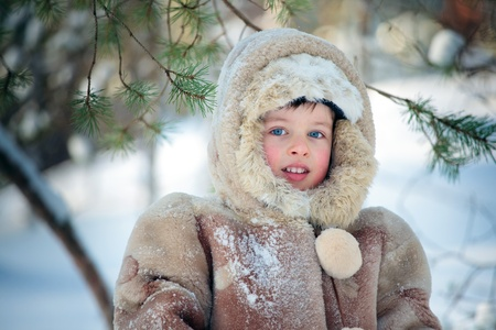 Portrait of a little boy in winter forest  Stock Photo