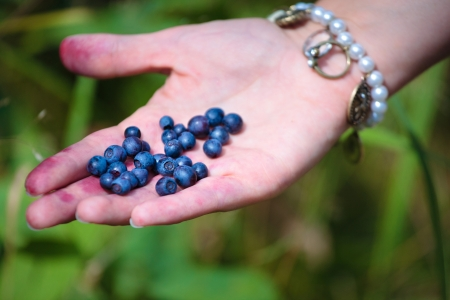 Woman holding fresh berries in her hand  photo