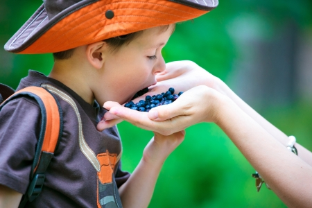 Cute little boy eating berries from mother s hand in forest