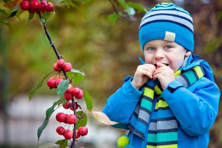 Cute kid picking up small wild red apples