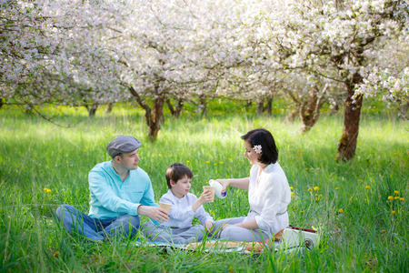 picnicking: Young family picnicking in blooming apple garden on beautiful spring day