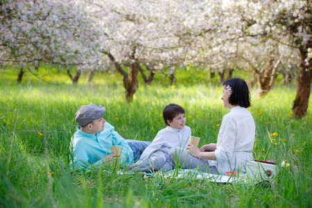 young tree: Young family picnicking in blooming apple garden on beautiful spring day