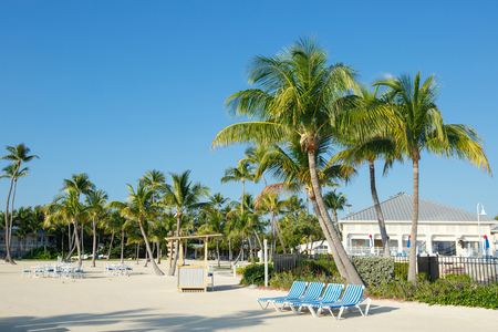 llaves: Resort tropical con largos chaise dispuestos en una fila cerca de las palmas en la playa arenosa, Key West, Florida, EE.UU.
