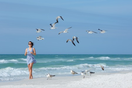 florida: Young woman feeding seagulls on tropical beach, Florida summer holiday vacation