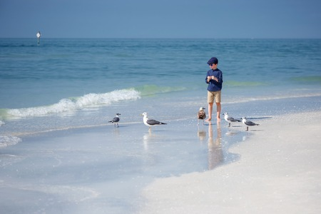 sandy beach: Cute little boy feeding seagulls on tropical beach, Florida summer holiday vacation Stock Photo
