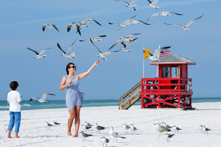 florida beach: Young mother and her little son feeding seagulls on tropical beach, Florida summer holiday vacation