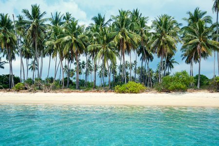 Tropical beach and coconut palms in Koh Samui, Thailand Stock Photo - 71539350