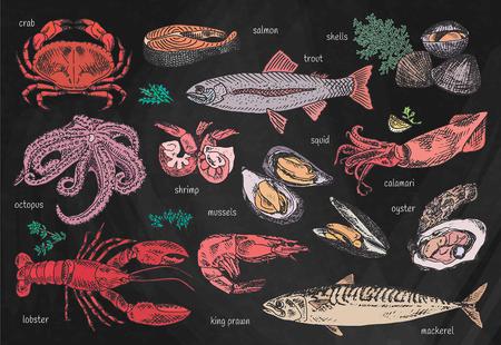 Schöne Meeresfrüchte stellten auf Tafelhintergrund ein