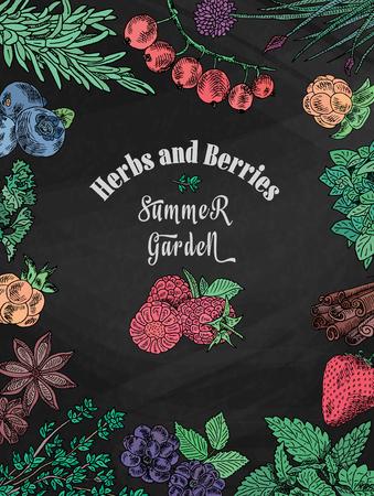 Chalk herbs, berries summer garden, blackberry, dewberry, mulberry, raspberry and more.