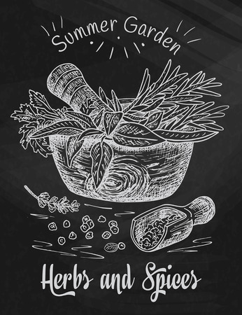 Beautiful hand drawing healthy herbs and spices mortar. Herbs, basil, chervil on the chalkboard background Illustration