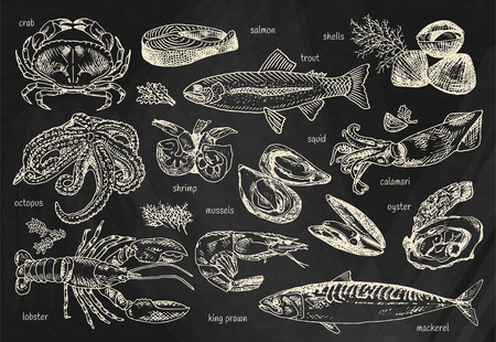 Seafood menu, octopus, mussels, lobster, trout, shells, mackerel, crab, oyster, king prawns, shrimps, squid, salmon, calamari on chalkboard background illustration. Illustration