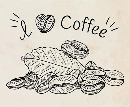 Beautiful illustration of coffee beans