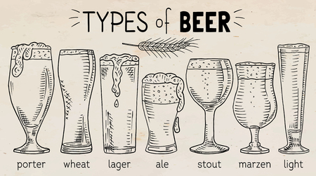 Types of beer, beautiful illustration of porter, wheat, ale, light, lager beer.