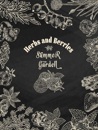 chalk herbs and berries summer garden, dewberry, blueberry, raspberry, strawberry, blueberry, cloud berry, herbs, basil, chives, coriander, oregano, rosemary, thyme on chalkboard background