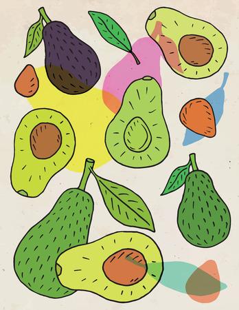 Sweet juicy avocado. Summer exotic food. Beautiful hand drawn illustration of fruits.