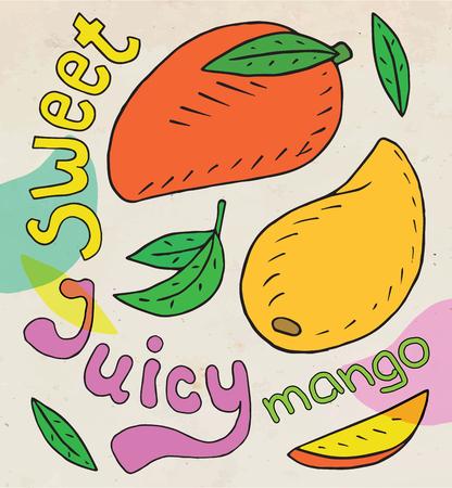 Sweet juicy mango. Summer exotic food. Beautiful hand drawn illustration of fruits. Ilustrace