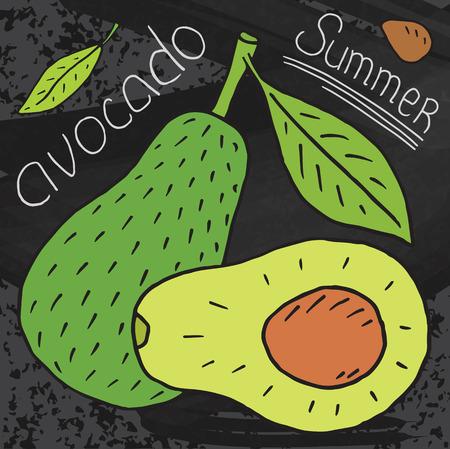 Sweet juicy avocado. Summer exotic food. Beautiful hand drawn illustration of fruits on chalkboard background