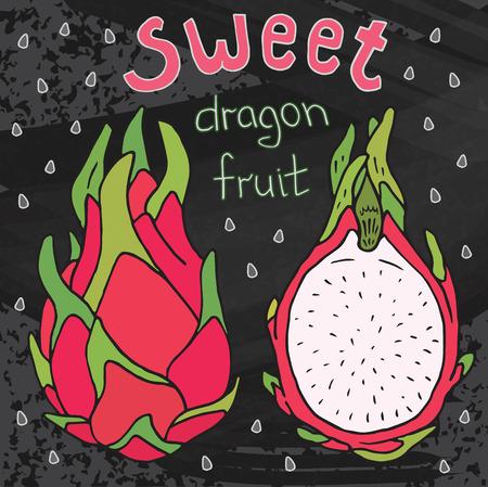 Sweet juicy dragon fruit. Summer exotic food. Beautiful hand drawn illustration of fruits on chalkboard background
