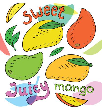 Sweet juicy avocado. Summer exotic food. Beautiful hand drawn illustration of fruits