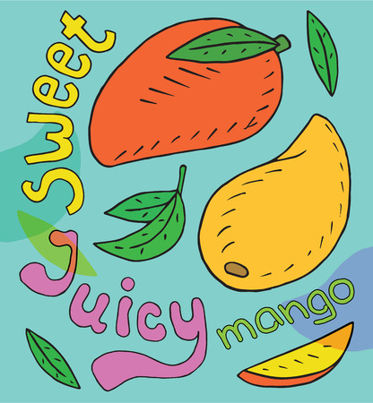 Sweet juicy mango. Summer exotic food. Beautiful hand drawn illustration of fruits Reklamní fotografie - 104267646