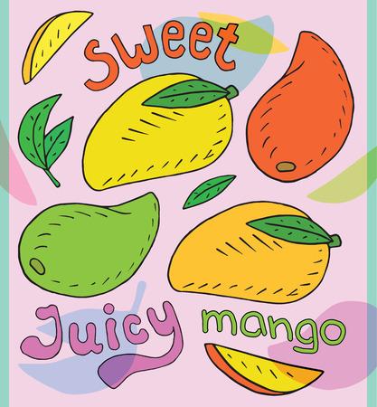 Sweet juicy mango. Summer exotic food. Beautiful hand drawn illustration of fruits Reklamní fotografie - 104267647
